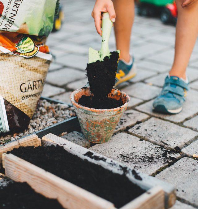 3 tuin inspiratietips voor de zomer